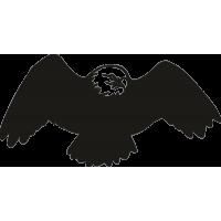 Орел 14