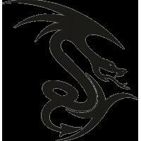 Татуировка Дракон 13