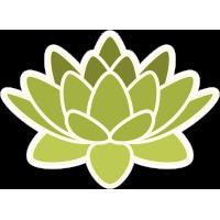 Зелёный цветок лотоса