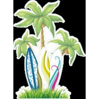 Пальмы и серфовые доски