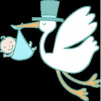 Аист с Младенцем 2