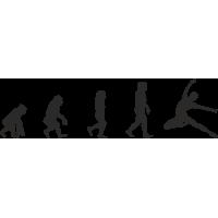Эволюция от обезьяны до Танцора балета 1