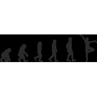 Эволюция от обезьяны до Танцора балета 2