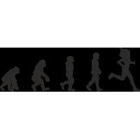 Эволюция от обезьяны до Бегуна 4