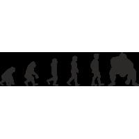 Эволюция от обезьяны до Сумоиста 2