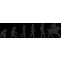 Эволюция от обезьяны до игрока Поло 2