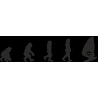 Эволюция от обезьяны до Виндсерфера 1