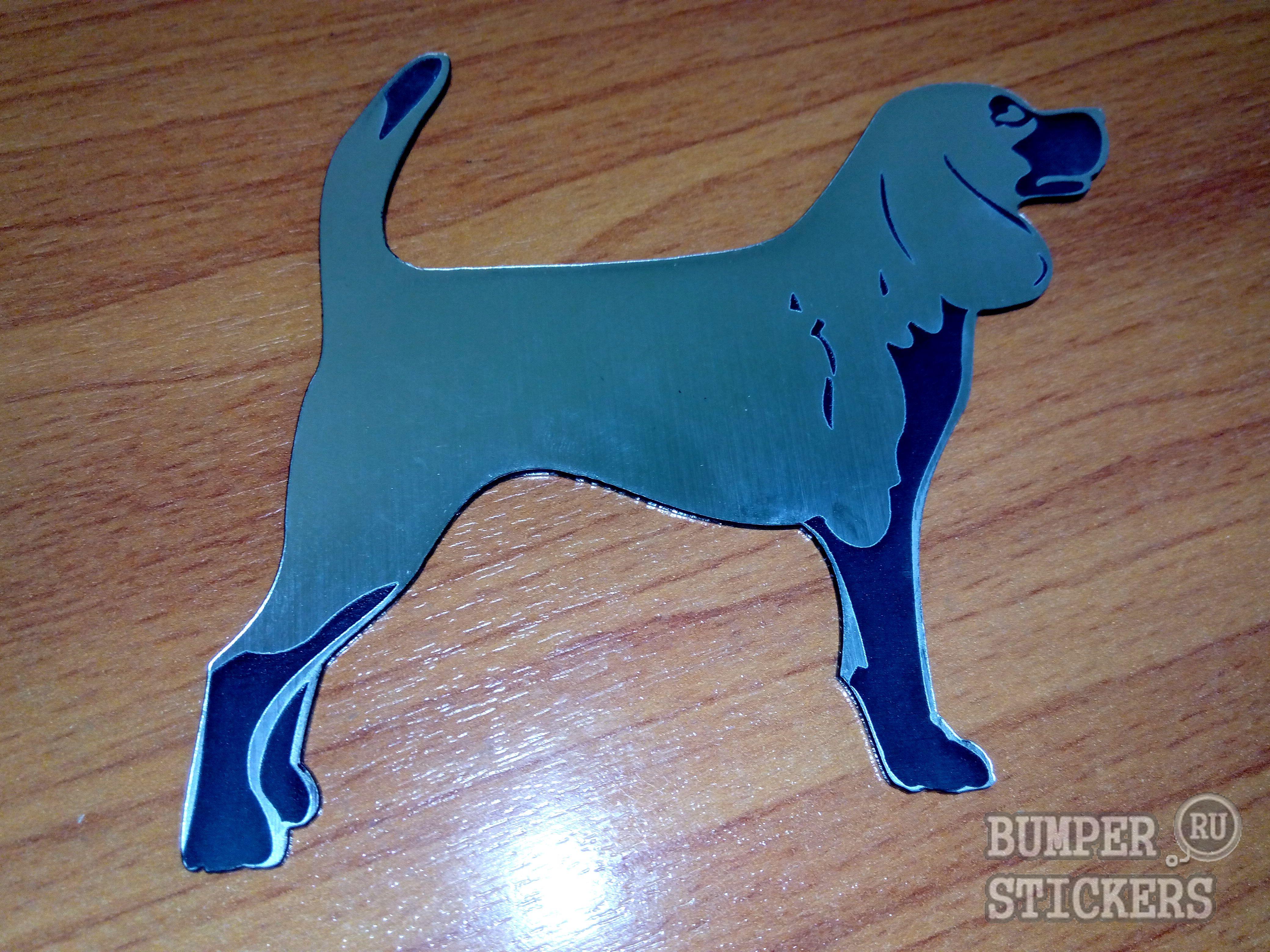 Shilda-dog