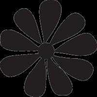Цветок незабудка