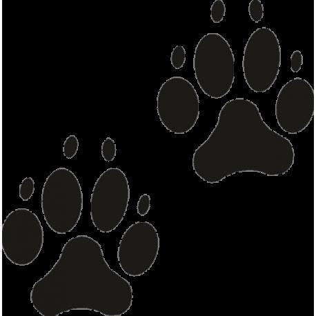 Следы собачьих лап