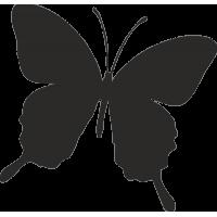 Бабочка 26
