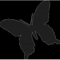 Бабочка 28