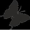 Бабочка 39