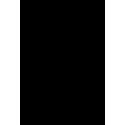 Череп 40