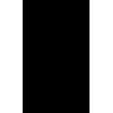 Череп 43