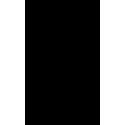 Череп 44