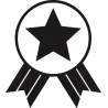 Медаль со звездой 2