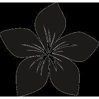 Цветок 36