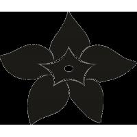 Цветок 38