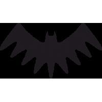Символ Бэтмена 13