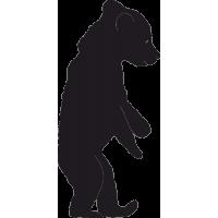 Медвежонок на двух Лапах