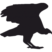 Птица с раскрытыми Крыльями