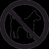 Вход с Собаками Запрещен 2