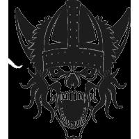 Череп в боевом Шлеме