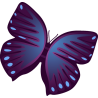Бабочка 52