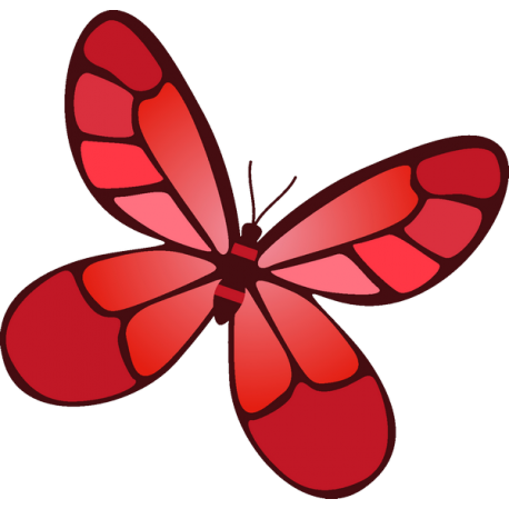 Бабочка 53