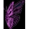 Бабочка 54