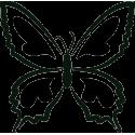 Бабочка 63