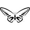 Бабочка 65