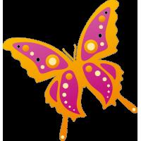 Бабочка 77