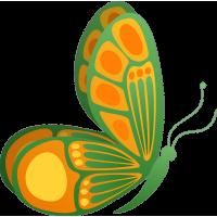 Бабочка 79