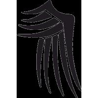 Татуировка Крылья 1