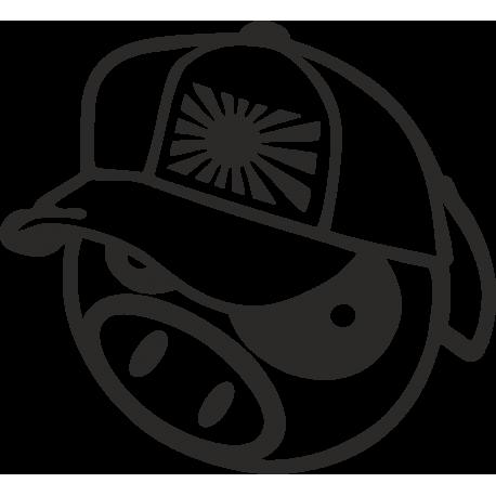 Pig in cap - свинья в кепке
