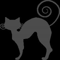 Кошка с закрученным Хвостом и Усами