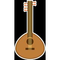 Индийская гитара