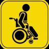 Знак инвалид за рулём 3