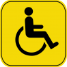 Знак инвалид за рулём 4