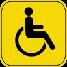 Знак инвалид за рулём 5