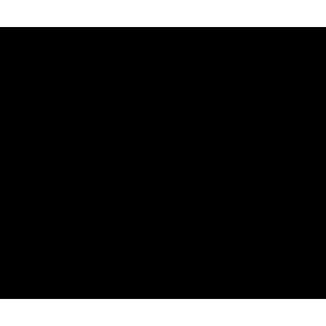 Девушка сидящая на надписи 4х4