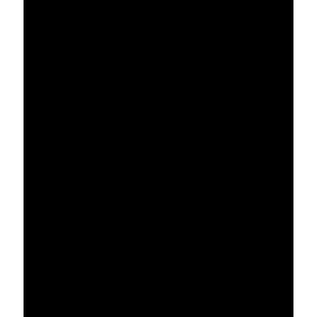 Девушка с эрокезом