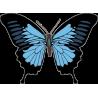 Бабочка 162