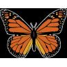 Бабочка 163