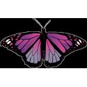 Бабочка черно-сиреневого цвета