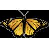 Бабочка черно-желтого цвета