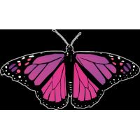 Бабочка черно-сиренево-малинового цвета