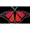 Бабочка чёрно-красно-малинового цвета